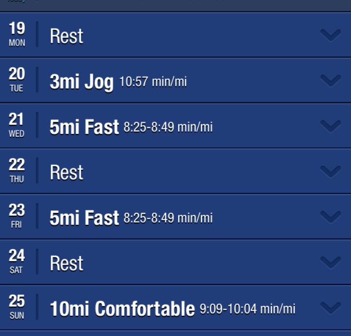 Half Marathon Training Workouts